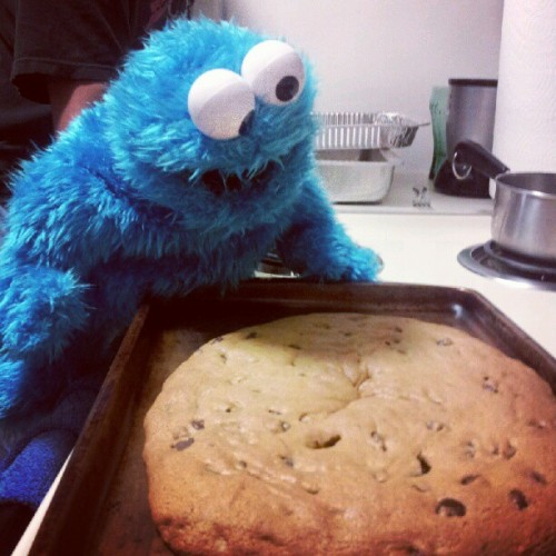 Baby Cookie Monster with a big cookie (Taken with instagram)