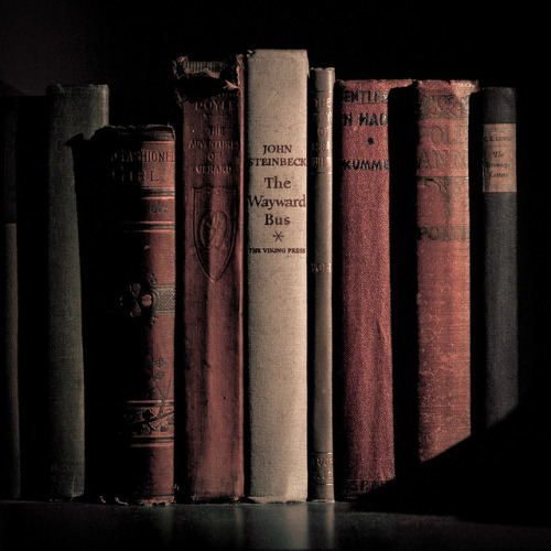 usedbookshop:  Project 365, Day 39 by HumanGobo on Flickr.