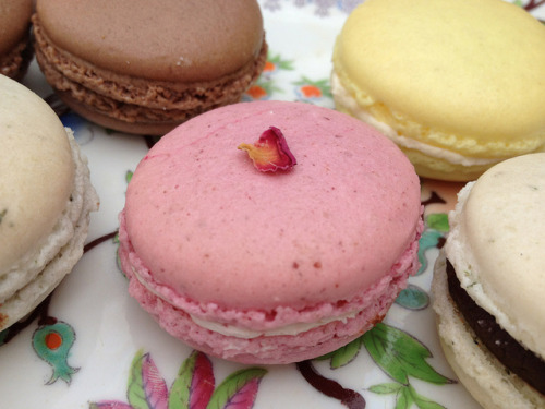 macaronsinabox:  Raspberry & rose macaroon by scrapiana on Flickr.