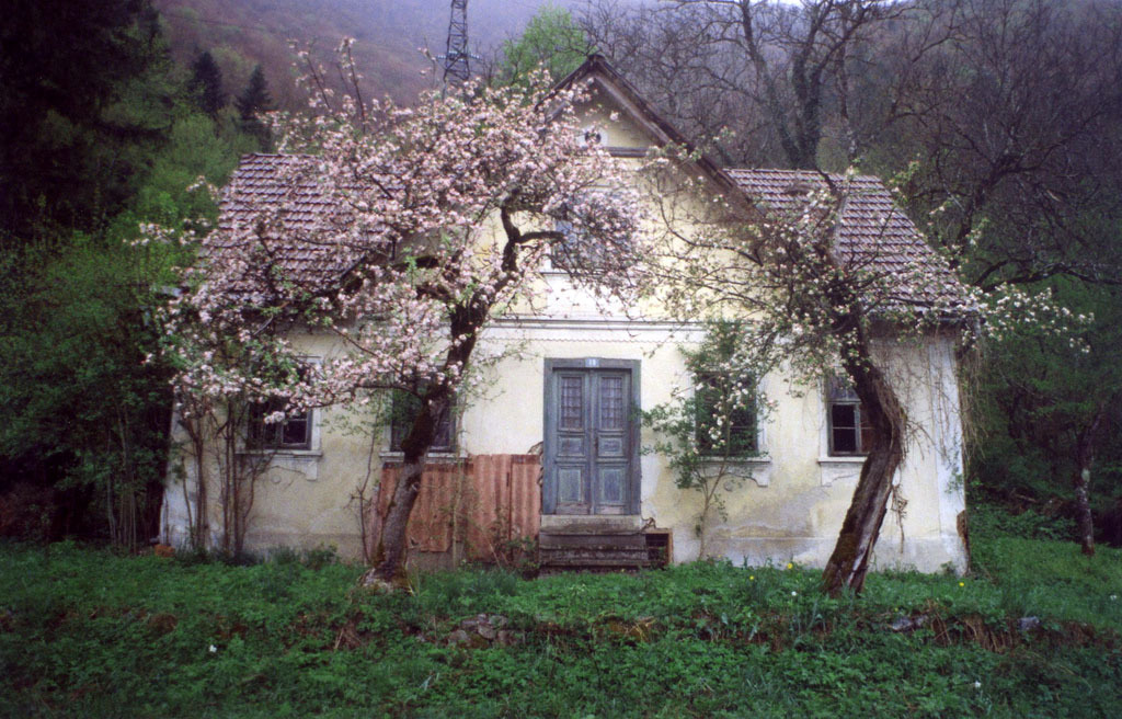 enchantedeccentricity:     A cottage in Croatia how charming and bohemian is this? (Dani Padgett)