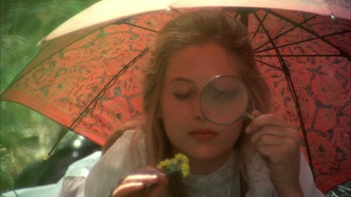 authenticfauxhemian:  Picnic at Hanging Rock