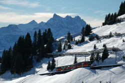 Col de Bretaye (Switzerland) - Train from Villars-sur-Ollon by Danielzolli on Flickr.