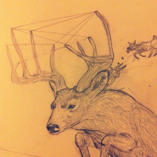 Progress for 'D is for deer'