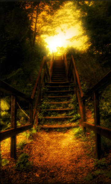 everything-has-its-own-story:  Stairs by ·The Oracle· on Flickr.