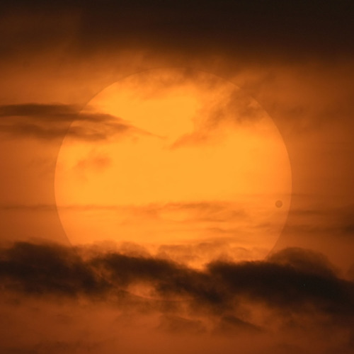 nonoo:  A Picturesque Venus Transit Image Credit & Copyright: David Cortner Explanation: The rare transit of Venus across the face of the Sun in 2004 was one of the better-photographed events in sky history. Both scientific and artistic images flooded in from the areas that could see the transit: Europe and much of Asia, Africa, and North America. Scientifically, solar photographers confirmed that the black drop effect is really better related to the viewing clarity of the camera or telescope than the atmosphere of Venus. Artistically, images might be divided into several categories. One type captures the transit in front of a highly detailed Sun. Another category captures a double coincidence such as both Venus and an airplane simultaneously silhouetted, or Venus and the International Space Station in low Earth orbit. A third image type involves a fortuitous arrangement of interesting looking clouds, as shown by example in the above image taken from North Carolina, USA. Sky enthusiasts worldwide are abuzz about the coming transit of Venus on Tuesday. It is perhaps interesting to wonder whether any person will live to see — and remember seeing — both Tuesday's Venus transit and the next one in 2117.