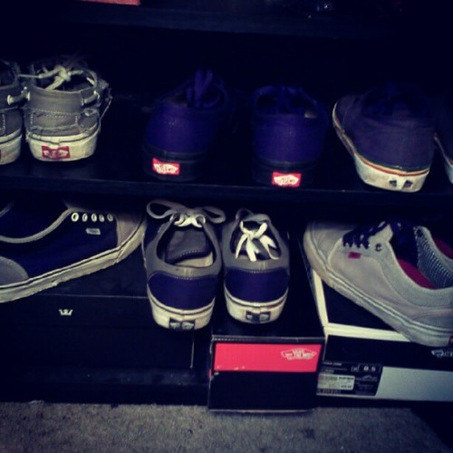 I #love #vans #addiction #canvas #vans #chukkalow #fresh (Taken with instagram)