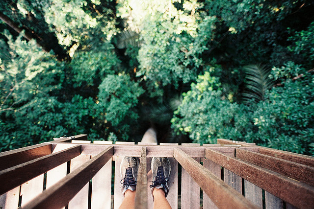 nostalgic-dreaming:  Canopy Walkway : Looking down by Liyin the Creative-Extraordinaire on Flickr.