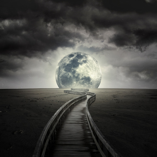 findinglogan:  i will walk, and catch the moon for love