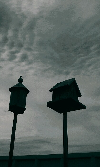 West Texas Birdhouses flatlander40 photography @flatlander40