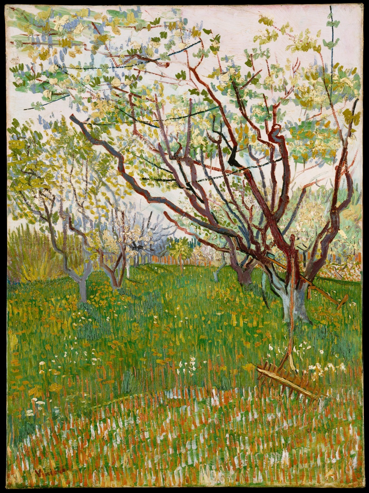 fckyeaharthistory:  Vincent van Gogh - The Flowering Orchard, 1888. Oil on canvas