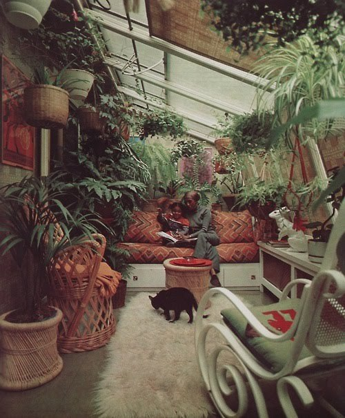 bohemianhomes:  Bohemian Homes: Houseplant