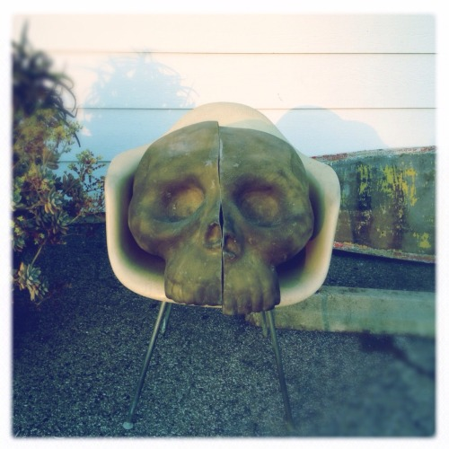 Eames shell chair and skull mold @digsmodern / Foothill 550 550 W. FoothillGlendora, CA 91741