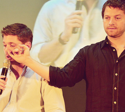 1/100 pictures of spn conventions  source
