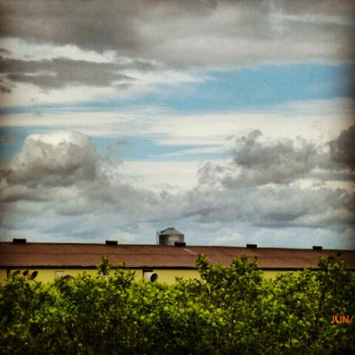 #sky #clouds #barn #silo #bushes  (Taken with instagram)
