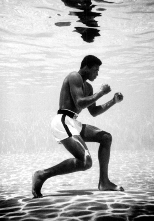 uglycatt:  1961 - Muhammad Ali Training Underwater in Miami