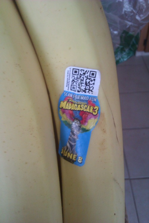 pizzaforpresident:  orbitars:  I WENT DOWNSTAIRS TO GET A BANANA AND I GOT GREETED BY THIS FUCKIN THING THEY'VE TAKEN OVER OUR FOOD SUPPLIES  hmm…
