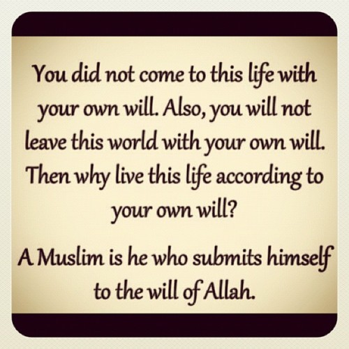 islamicthinking:  A Muslim is he who submits himself to the Will of Allah SWT. #islam (Taken with instagram)