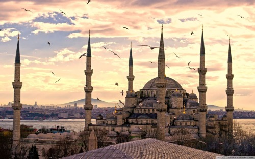 mustseeplaces:  Sultan Ahmed Mosque, Istanbul, Turkey, 41° 0′ 19.74″ N, 28° 58′ 38.59″ EThe Sultan Ahmed Mosque is an historical mosque in Istanbul, the largest city in Turkey and the capital of the Ottoman Empire (from 1453 to 1923). The mosque is popularly known as the Blue Mosque for the blue tiles adorning the walls of its interior. It was built from 1609 to 1616, during the rule of Ahmed I. Like many other mosques, it also comprises a tomb of the founder, a madrasah and a hospice. While still used as a mosque, the Sultan Ahmed Mosque has also become a popular tourist attraction.