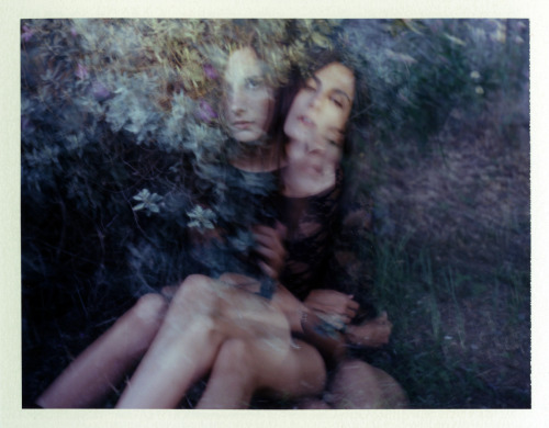 Roarie Yum on instant film.