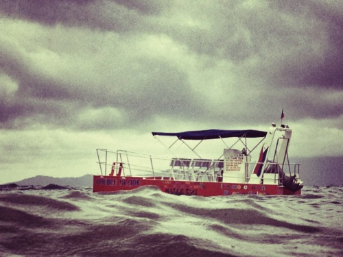 POTD: in need of rescue #iphoneography