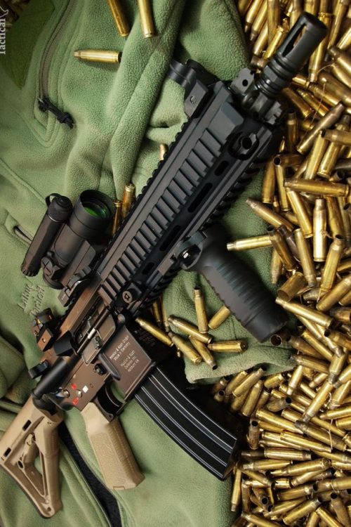 harpt:  Another cool picture of an AR-15 and ammo.