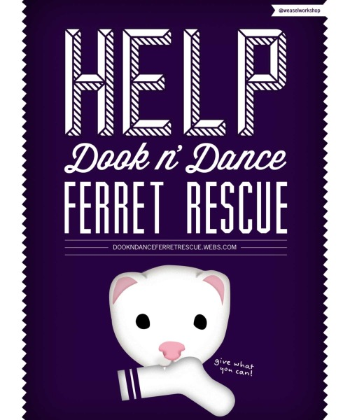 weaselworkshop:  Help out Dook n' Dance Ferret Rescue! Check out their site & FB to see the great work they're doing - donating is really easy too!