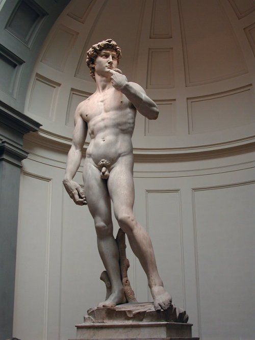 ikilledjackjohnson:  Michelangelo - David (1501)