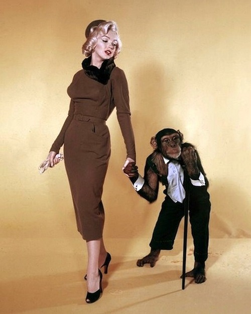 theniftyfifties:  Marilyn Monroe and friend in a publicity photo for 'Monkey Business', 1952.