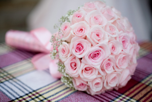 floralls:  Pink Rose Bride Bouquet (by www.BunchesDirect.com)