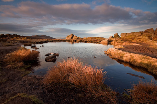 mockingyaj:  Warm Light on Doxey Pool by Paul Newcombe on Flickr.