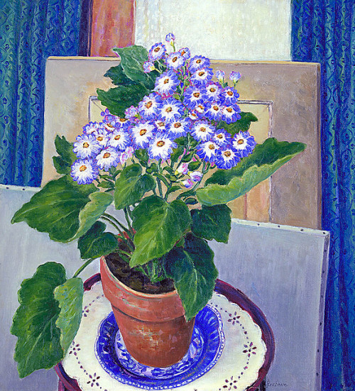 Josephine L. Reichmann: Cineraria, 1934 by americanartmuseum on Flickr.