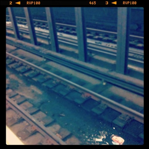 Andy Samberg's head in the tracks (Taken with instagram)