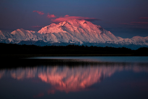 putyoureartothespeaker:  Denali, Reflection Pond by megascapes on Flickr.