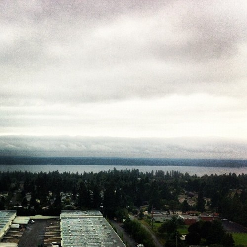 Seattle is cloudy and murky. Shocker, I know. (Taken with instagram)