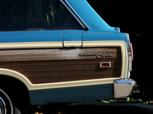 fuckyeahwoodpaneling:  Torino Squire by Drew Makepeace on Flickr.