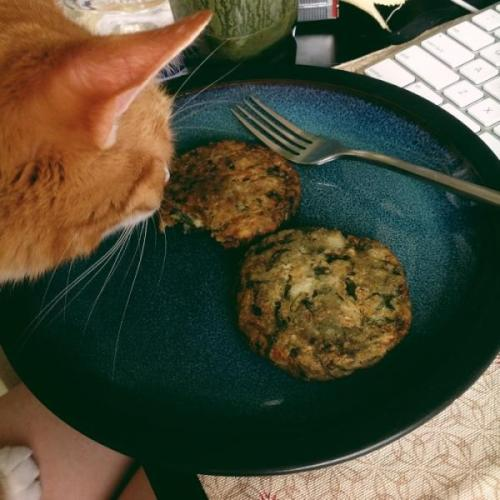 Mm, lunch. (Spinach patties!)