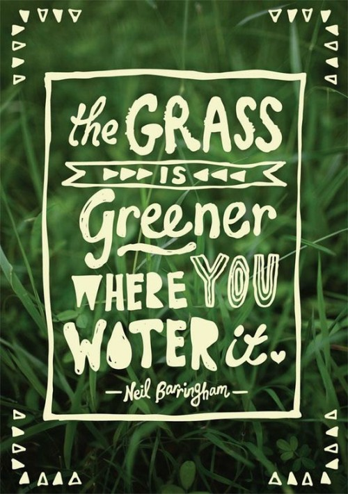 01 verdade universal: THE GRASS IS GREENER WHERE YOU WATER IT :)