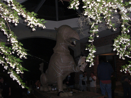 Griffin float framed by mock-orange blossoms in the library breezeway. #Reedfayre12 (photo by Dan Schafer '92)