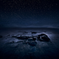 New Night by Latyrx on Flickr.