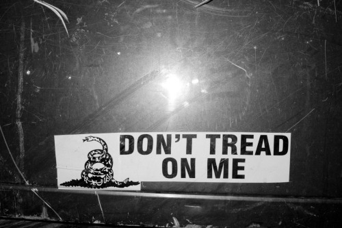 terrysdiary:  DON'T TREAD ON ME