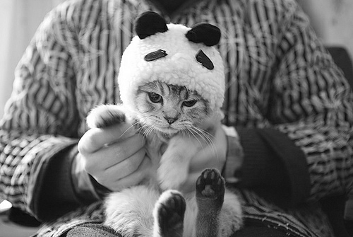 dontbelievehersmile:  black and white blog :)
