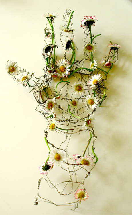 Helen Butler, Untitled (wire sculpture with daisies), England.  via Dark Silence in Suburbia.