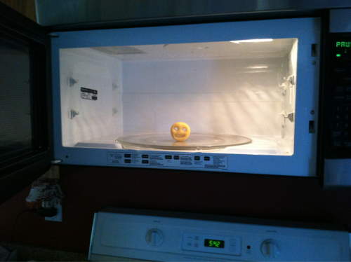 I put a smiley fry in the microwave so next time my mom goes to make something she gets a pleasant yet unpleasant surprise