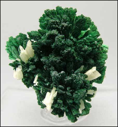 Malachite, 2.4 cm, from Bou Beker, Oujda, Morocco. Fabre Minerals specimen and photo.  These beauties are loose sprays and groups of interconnected sprays of brilliant green malachite crystals with, as an extra feature, pearly white cerussite crystals perching here and there on them.