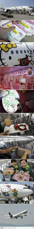 Hopefully you can see the amazing Hello Kitty Airline pictures. I must travel on this plane in my life.