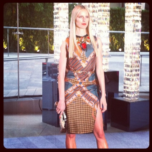 Karolina Kurkova at the 2012 CFDA Awards Taken with instagram