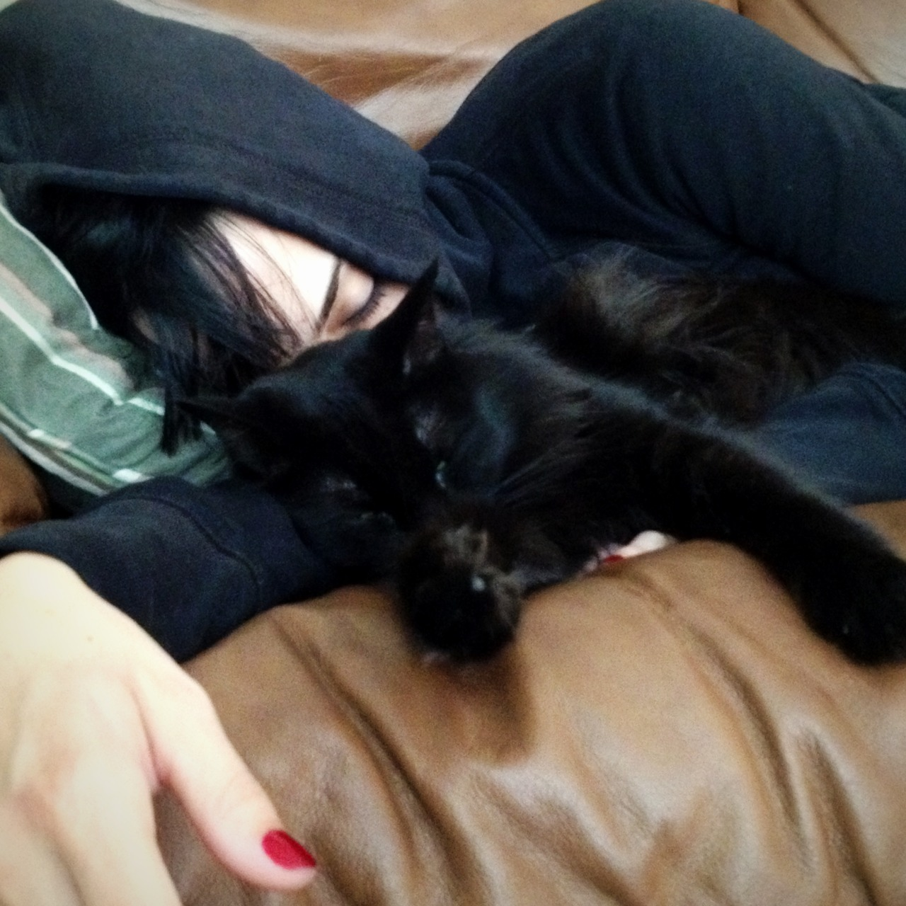 Cat naps. Some of my happiest moments.