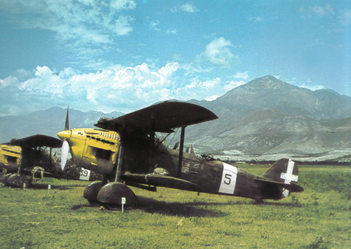 Meridionali Ro.37 Linces (Lynx) with 560 hp Fiat A.30 inline engines
