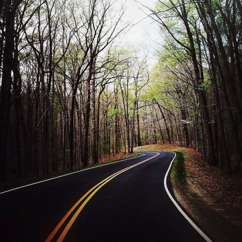 winding road. (Taken with instagram)
