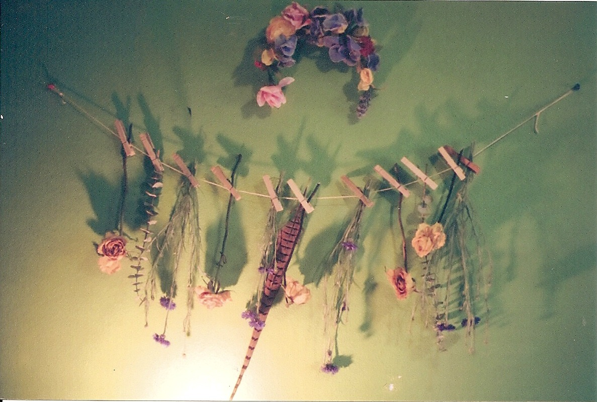 mossbaby:  I made a sort of garland thing